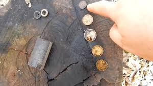 metal detector treasure finds